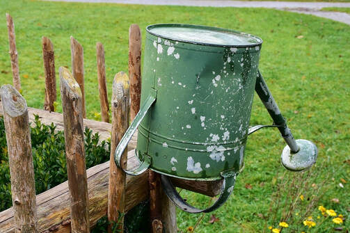 upside down watering can-tree care tips_chelmsford tree surgeon